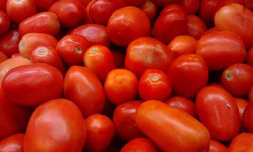 Crop Farm image